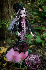 IMG_9840 (Cleo6666) Tags: draculaura collector draculaurasweet1600collectordoll monster high monsterhigh mattel deluxe deluxeedition