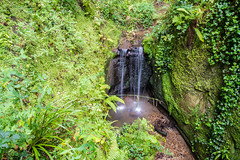 Shanklin Chine ('Andy Kaye) Tags: andykaye andykayephoto andykayephotography andykelleher chine d810 fx iow isleofwight nikon nikond810 shanklin shanlinchine camera colour fullframe light lightroom manualmode nature nikonpassion outdoor outdoors photo photograph seaside slowshutter summer water waterfall waterway allrightsreserved