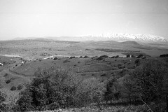 Har Hermon (Golan Heights, Israel) (Fogel's Focus) Tags: israel 28mm north olympus 11 d76 zuiko f28 golanheights 2012 20c acros hikingtrip om1n kodakd76 film:iso=100 legacypro100 harhermon developer:brand=kodak developer:name=kodakd76 film:brand=freestylearista freestylearistalegacypro film:name=freestylearistalegacypro100 filmdev:recipe=7558 1031min