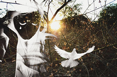 cryoutloud (Moonlight Lov) Tags: sunset bird freedom golden tears doubleexposure negative hour moonlight cry lov selfpotraits 365project chandniduaphotography