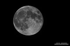 Full Moon (DMeadows) Tags: blackandwhite moon white black mono blackwhite space satellite crater lunar tamronaf55200mmf456diiild davidmeadows dmeadows davidameadows dameadows yahoo:yourpictures=yourbestphotoof2012