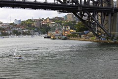Luna Park Sydney (oxfordblues84) Tags: bridge sailboat river au sydney australia nsw newsouthwales lunapark sydneyharbour sydneyharbourbridge rccl radianceoftheseas lunaparksydney parramattariver 5photosaday royalcaribbeaninternational