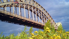 Hell's Gate Bridge (americasroof) Tags: randallsisland june25 hellsgatebridge 201206