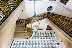 L'escalier d'honneur (Franois Doroth) Tags: paris france castle stairs gold golden stair or stairway versailles marble checkerboard chteau escalier palaceofversailles marbre escaliers marches dor trianon carrelage petittrianon carreaux damier dorures escalierdhonneur franoisdoroth francoisdorothe