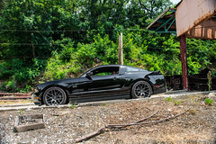 DSC_6176 (Rob Rabon Photography) Tags: black ford car md nikon muscle baltimore american mustang gt 50 v8 d800 2011