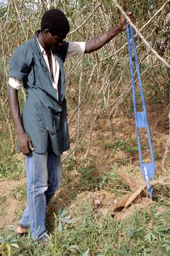 Manual cassava harvester - a photo on Flickriver
