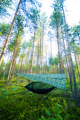 Finland_Canoeing_175 (jjay69) Tags: camping trees nature forest woodland finland woods peace outdoor sleep camo cover hammock shelter protection pinetrees tarpaulin conifers tarp silverbirch broadleaf basha camoflague travelhammock ddhammock ddtarp frontlinehammock