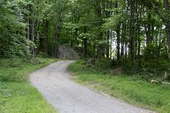 West Virginia 6-12-557 (Cwrazydog) Tags: thomas stewart westvirginia davis parsons blackwaterfalls elkins grafton philippi belington morantown