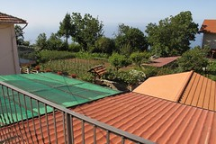 The view from our B&B (Rory Francis) Tags: italy cliff coast high lemon mediterranean italia amalficoast lizard heat italie amalfi sanlazzaro agriturismo costieraamalfitana agerola yreidal slazzaro dagigino aneadailt aniodail lalunadalgerola lalunadagerola