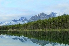 Morning Mirror (Patricia Henschen) Tags: lake canada mountains rockies nationalpark parks rocky alberta banff northern parcs icefieldsparkway herbertlake