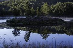 An lovely morning by the island (Vidar Lennart Fredheim) Tags: hammersmarkvatnet water lake vann vatn lund norway nature natur landscape landskap reflection speiling trees trær green grønt blue blå