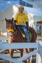 All Smiles (Samantha Decker) Tags: canonef135mmf2lusm canoneos6d ny nyra newyork samanthadecker saratogaracecourse saratogasprings horse upstate