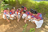 """Seniors Jivakul Club - Sowing the Seeds • <a style=""""font-size:0.8em;"""" href=""""https://www.flickr.com/photos/99996830@N03/28731929094/"""" target=""""_blank"""">View on Flickr</a>"""