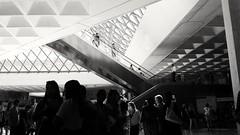 (hmtrn) Tags: monochrome museedulouvre louvremuseum paris france