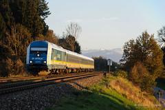 ALEX - Hhenreute (Giovanni Grasso 71) Tags: alex hhenreute er20 br223 siemens locomotiva elettrica diesel mtu caterpillar lindau immenstadt kempten monaco kbs970 allgu allgubahn
