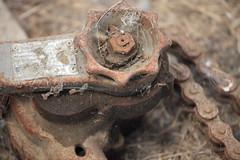 Neglect 1 (pember556) Tags: barnfind rachet hoist cobweb canon5dmark2 canon70200lis rust forgotten chain