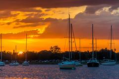 Florida (blue5011b) Tags: florida sunset sailboat water davisisland tampa bay boat nikon d7100