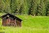 DSC_9505 (Costi Jacky) Tags: france naturereserve parcdemerlet