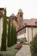 DSC00801 (michael40001) Tags: worms rheinlandpfalz deutschland tamron tamronspaf1750mmf28xrdiiildasphericalif dt1750mmf28 tamron1750mmf28 sony sonyalpha68 sonya68 ilca68 de