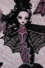 IMG_9810 (Cleo6666) Tags: draculaura collector draculaurasweet1600collectordoll monster high monsterhigh mattel deluxe deluxeedition