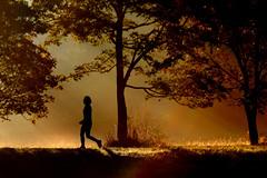 morning walk (Wackelaugen) Tags: fog sunrise mist light gold golden perosn woman silhouette wiesental vaihingen university canon eos photo photography wackelaugen googlies dreamy