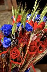 Las verdades, como las rosas, tienen espinas; recbelas por la parte de la flor y no te pinchars. (Mar Coll del Tarr) Tags: flores nikon catalonia catalunya rosas ramo rojas tradicion azules santjordi ramblacatalunya d90 230412