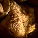 Howe Caverns - Howes Cave, NY - 2012, Apr - 05.jpg by sebastien.barre