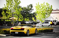 Summer Fever. (AESDUB) Tags: santa macro cars yellow lens spider san awesome diego andrew ferrari exotic wright fe rancho gallardo ferarri sante legit d5100 aesdub