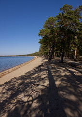 Beach in Burabay lake, Kazakhstan (Eric Lafforgue) Tags: trees shadow lake beach nature water vertical landscape outside outdoors sand eau exterior horizon sable lac bluesky nopeople ombre arbres paysage centralasia kazakhstan plage kazakh easterneurope quietness dehors cielbleu exterieur burabay vueexterieure tranquilite quietscene scenetranquille lacburabay burabaylake kz6627