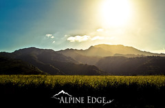 Hawaiian Mountains (AlpineEdge) Tags: morning vacation usa cloud sun mountains field grass forest hawaii am oahu rich earlymorning bluesky ridge northshore valley tropical lush thisckforest