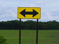 Two Way Sign (The Tire Zoo) Tags: road sign yellow signage arrows deadend leftturn rightturn
