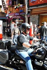 Harley-Davidson (frasermathieson) Tags: girls men leather paint boots fat hell angles motorbike harleydavidson carrot motor bags piss granny fatboy girlies leatherjacket bikers tanks wheelers paintjob grannie realmen bikefestival pisspot hellangels harleydavidsonharley