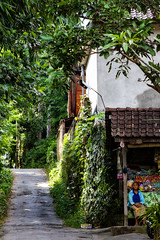 Bali. Sayan village. (Markus Hill) Tags: street travel bali canon indonesia asia asien sayan indonesien 2012