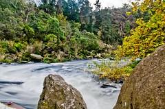 DSC_3020 (zeusch) Tags: tasmania gorge launceston cataractgorge firstbasin launcestonbasin launcestoncataractgorge