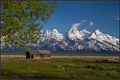 View of Tetons from Mormon's Row (whizvish) Tags: snow mountains field cabin montana meadow logcabin wyoming grandteton jacksonhole mormonsrow