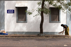 Sweeping, Pondicherry (Marji Lang) Tags: street city travel windows people woman india white tree wall composition work french grey shadows geometry indian colonial streetphotography streetscene cleaning clean forms worker sweep tamil tamilnadu balai pondicherry sweeping streetshot sweeper pondy tamoul pondi travelphotography republicofindia pondichry frenchcolony ef247028l indiansubcontinent puducherry canoneos5dmarkii quartierfranais villeblanche ruedupuy frencharea travelanddocumentaryphotography marjilang