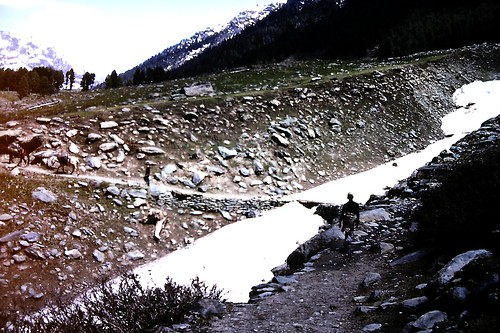 Trekking north of Aru, Kashmir