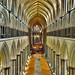 Salisbury Cathedral NX200