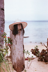 Woman at beach (mr_i) Tags: street old sky cloud sun seascape tree green love beach nature landscape island 50mm leaf nikon alone bokeh superia clear jungle harmony malaysia fujifilm lonely nikkor folks fm2 f12