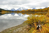 Fall Dreams - #7 Explore!  Thank you! (Deby Dixon) Tags: travel autumn snow mountains reflection fall tourism nature photography nikon cloudy fallcolors dreaming snakeriver aspen tetons deby allrightsreserved 2012 grandtetonnationalpark oxbowbend debydixon debydixonphotography