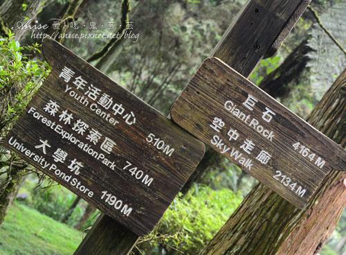 溪頭自然教育園區014.jpg