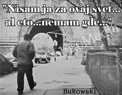 buko_000000_zpsmzmahgfh (Multimedija Stefanos) Tags: carls bukowski citati nisam ja za ovaj svet al eto nemam gde