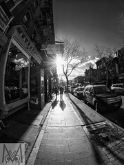 Golden Hour Brooklyn (Megan Crandlemire Photography) Tags: megancrandlemire olympus em1 micro43 omd zuiko street photography black white monochrome nyc bnf fotografiacallejera photographiederue