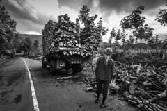 (ayashok photography) Tags: ayp1029 ayashok ayashokphotography nikon nikond810 cwc chennaiweekendclickers india indian bharath desi desh barat barath bharat asia asian