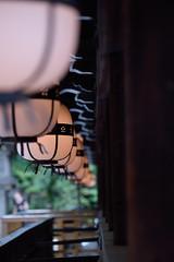 DSC_3902 (kazuchan_nara) Tags:   kyoto japan kitanotenmangu
