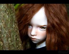 N'allez pas dans les bois ! ( Nyu.) Tags: asian doll bjd ball jointed dim mind annabeth