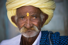 Inde: Rajasthan; vieil homme. (claude gourlay) Tags: inde india asie asia indedunord northindia claudegourlay portrait retrato ritratti indija indien hindu hindouisme rajasthan people face turban