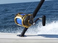 16-08-28-54 (Bill Billings) Tags: branchoffice strozier deepseafishing