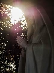 Sagrada devocion. (asidonian) Tags: holy devotion virgin fatima portugal ourem hope faith pilgrimage pilgrim belief dogma peace sun light santa devocion sagrada virgen esperanza fe peregrinacion peregrino creencia paz sol luz olympus omd em5mkii em5 em5mk2