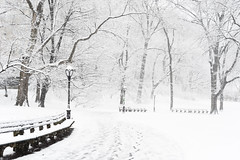 Winter in NYC (-*Marie*-) Tags: nyc new york city usa